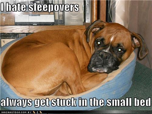 sleepover.png