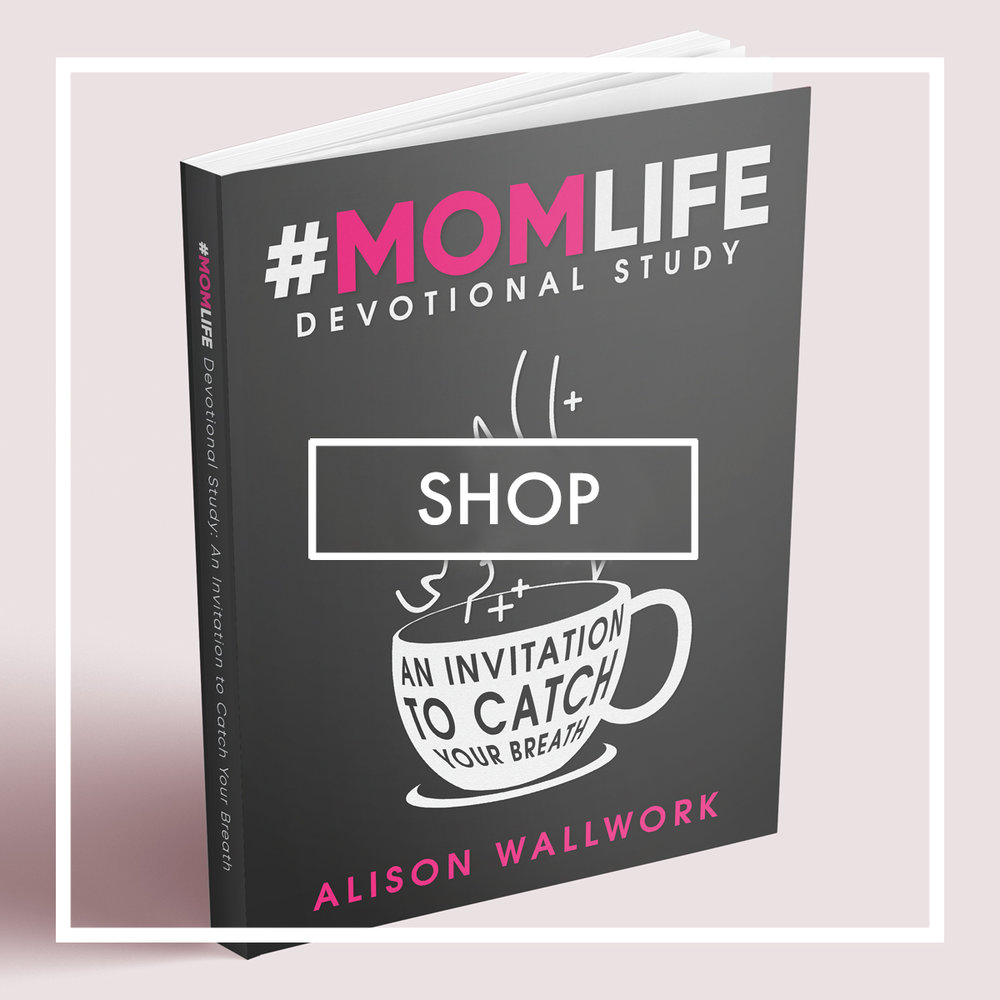 SHOP-ALISON-WALLWORK-AUTHOR-MOMLIFE-BOOK.jpg