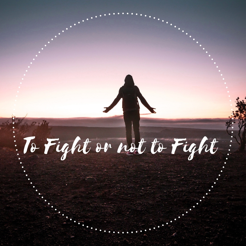 To Fight or not to Fight ALISON WALLWORK  BLOG  .jpg