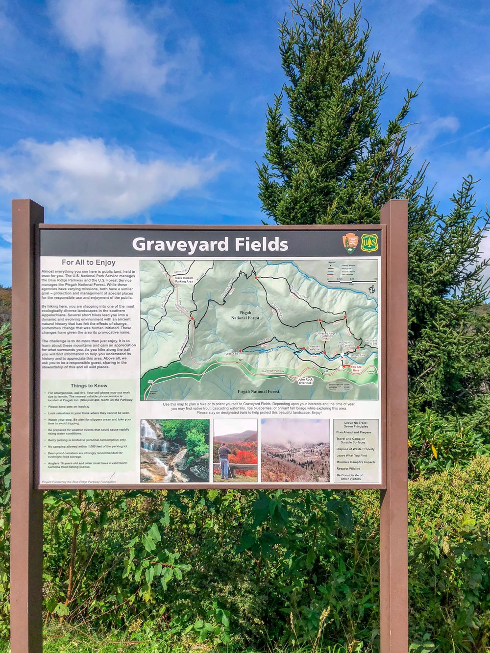 Graveyard Fields Trail Head Map
