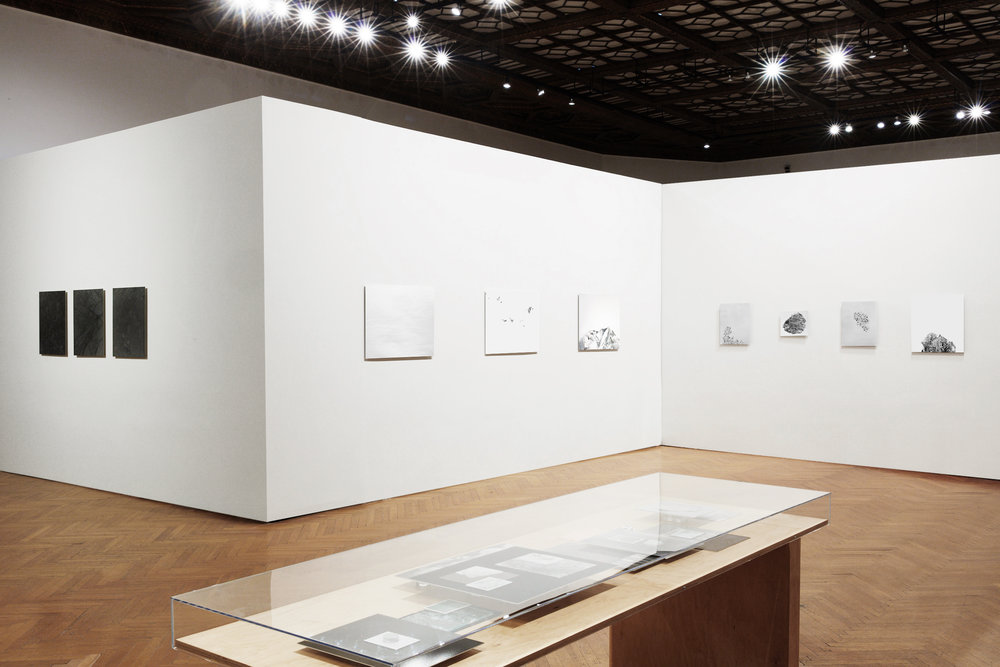Jennifer Brandon & Jay DeFeo: Photographic Works   Installation, Mills College Art Museum  Left to right:  Fusings , 2015,  Overlay I,  2017,  Silverscape I,  2017,  Peak I , 2017,  Untitled (collage),  2017,  Recollected,  2016,  Untitled (collage),  2017,  Peak II,  2017  Foreground:  Formations , 2018