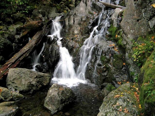 Rodney Falls -