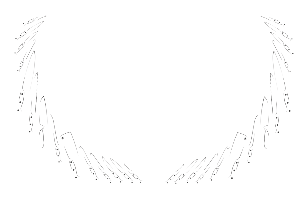 AWFF2018-OfficialSelection_WhiteTransparent-low-opacity.png