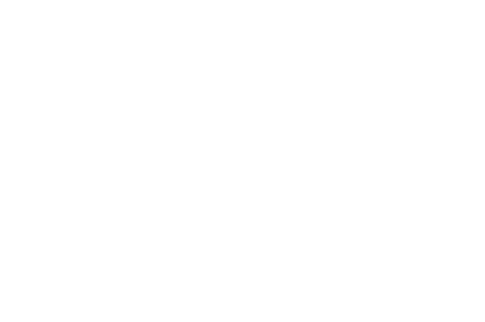 OFFICIAL SELECTION - Videodrunk - 2018 (1)_low_opacity.png