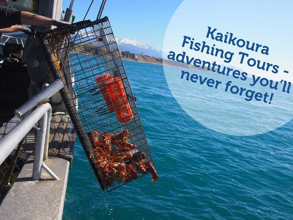 Crayfish fishing trips Kaikoura