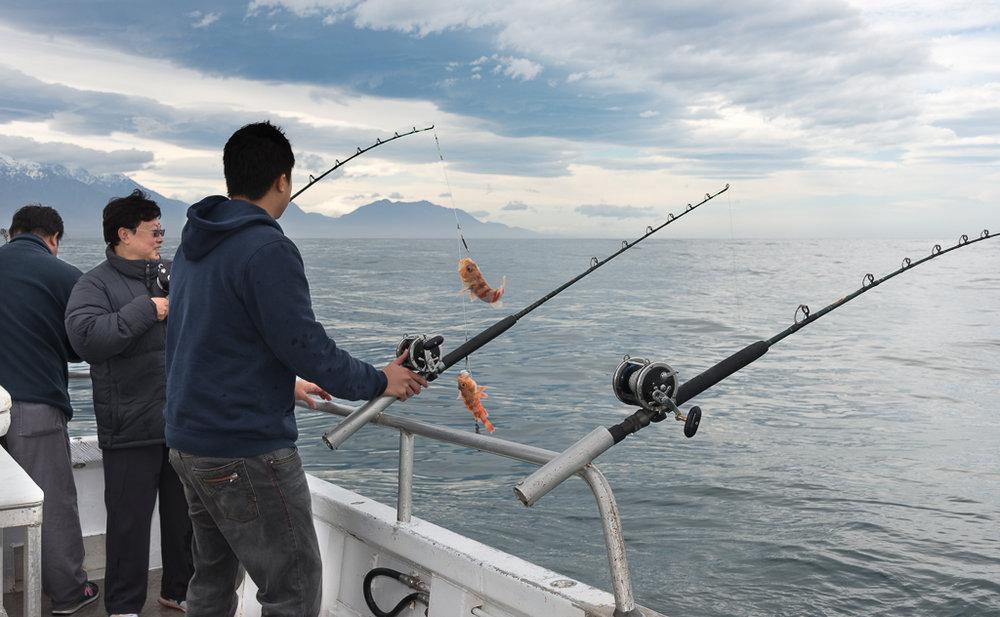 Kaikoura Fishing Charters-2.jpg