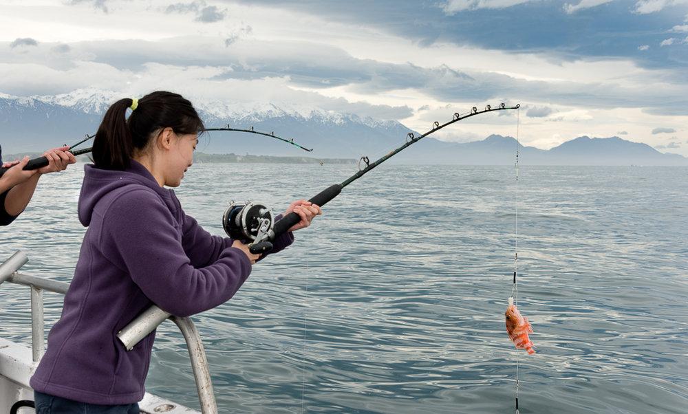 Kaikoura Fishing Charters-3.jpg