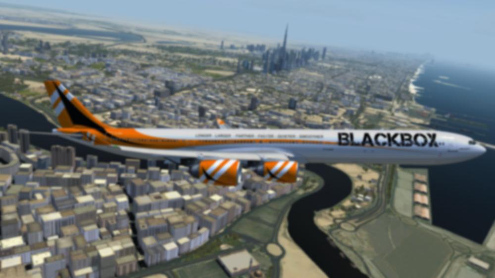 Black Box Simulations -