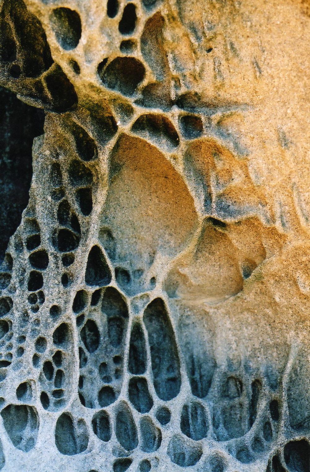 Sand stone on boulder beach.jpg