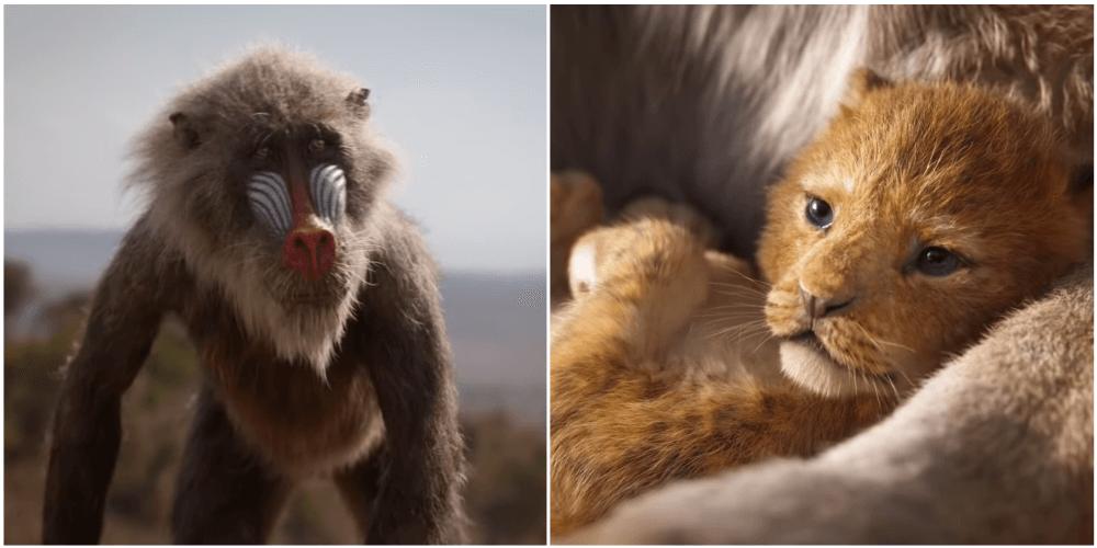 Rafiki and Simba 2019.png
