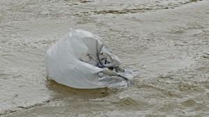 Trash bag in tailrace