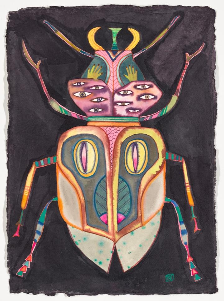 Pink bug, 30c40cm, ink on khadi paper
