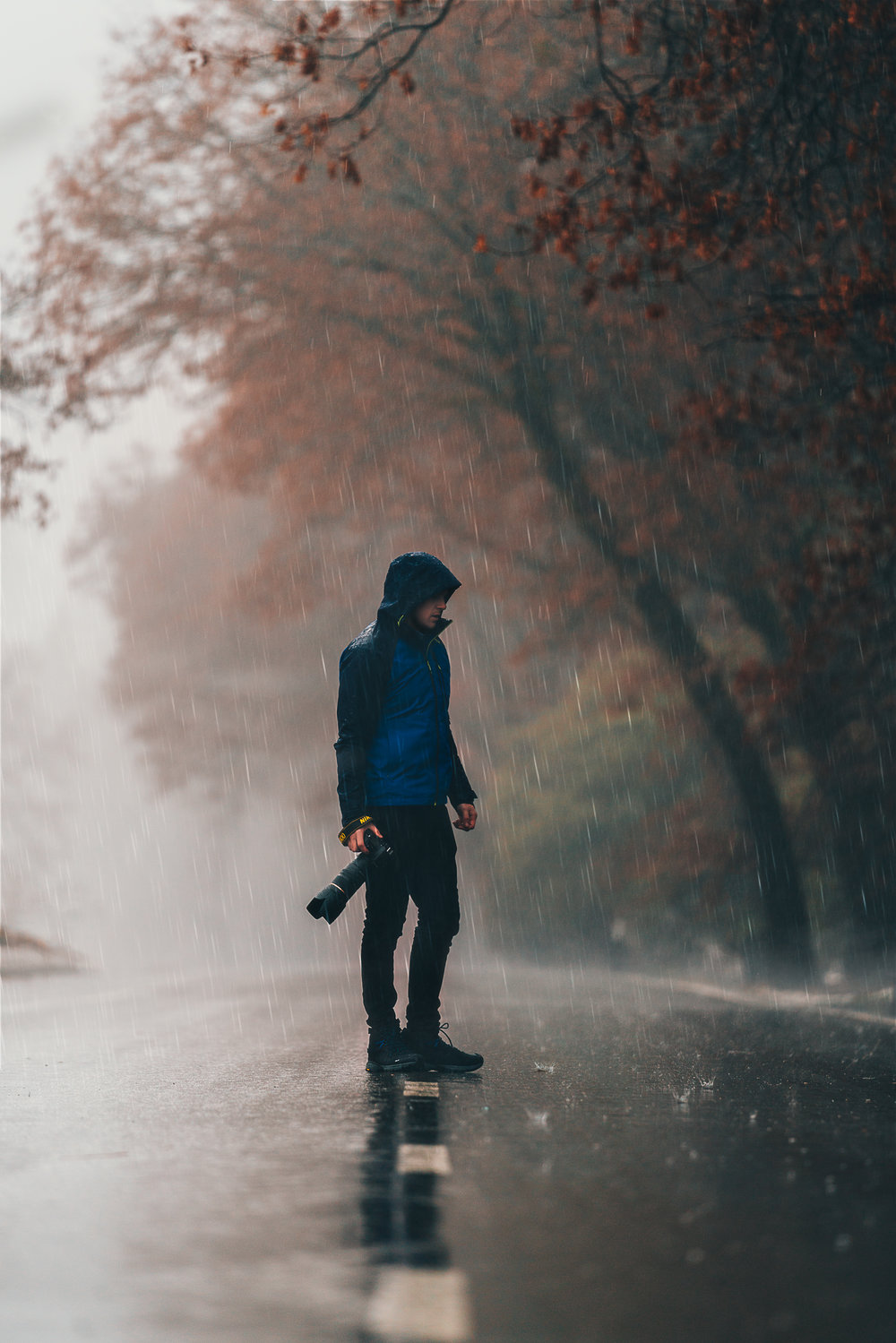 Rainy Daze-1.jpg