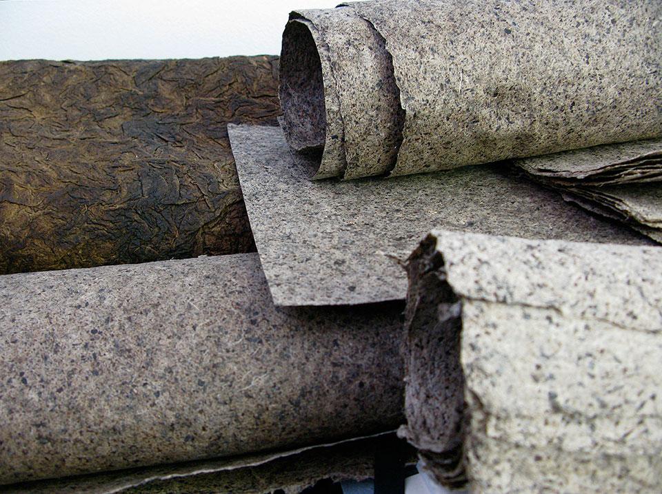 rolled-flax-seaweed-pulp-from-haystack-coast.jpg