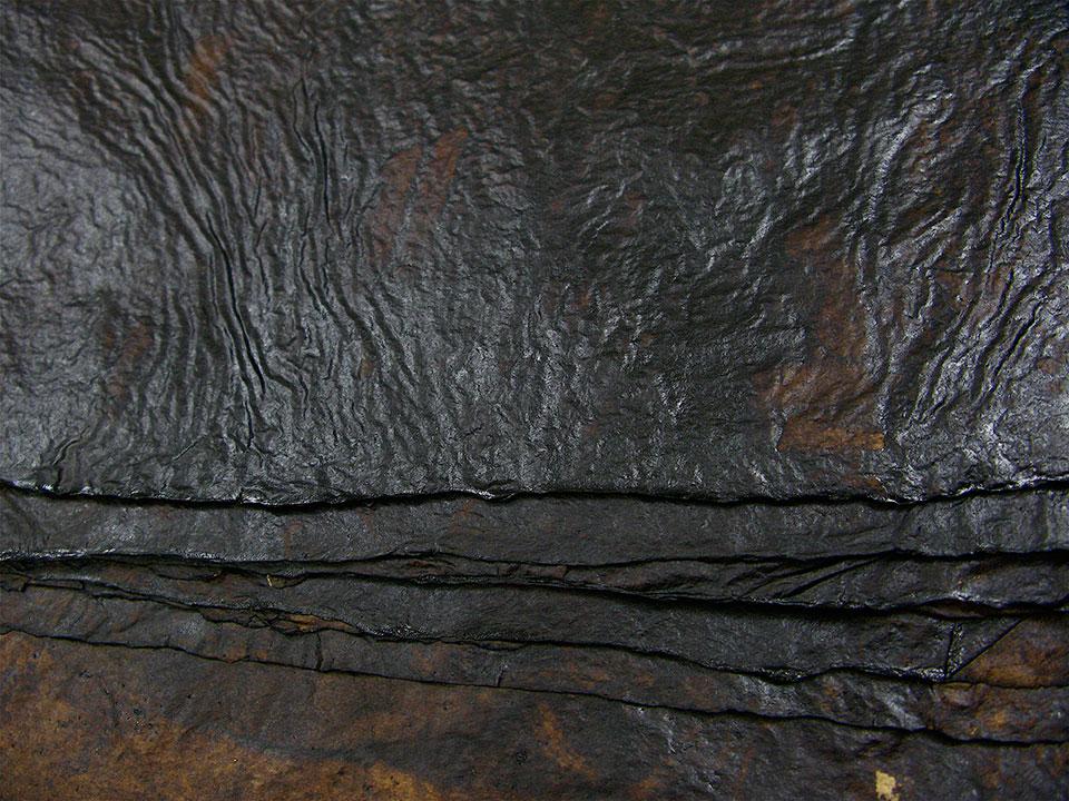 detail-walnut-dye-leathery-surface.jpg