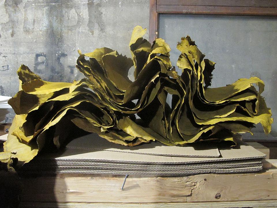 unopressed-dyed-paper-atop-restraint-stack-dryer.jpg