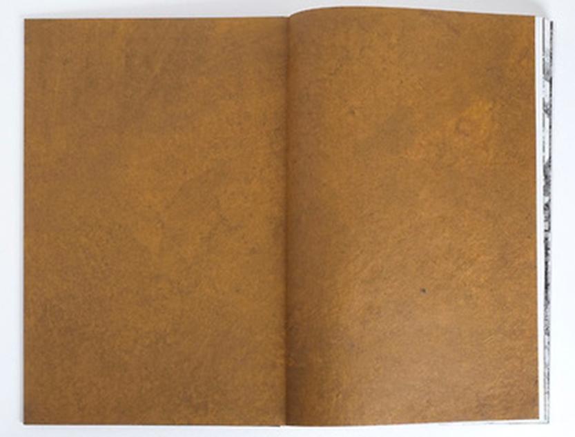 ian-van-coller-mali-monuments-endpapers-flax-abaca-pigment-walnut.jpg