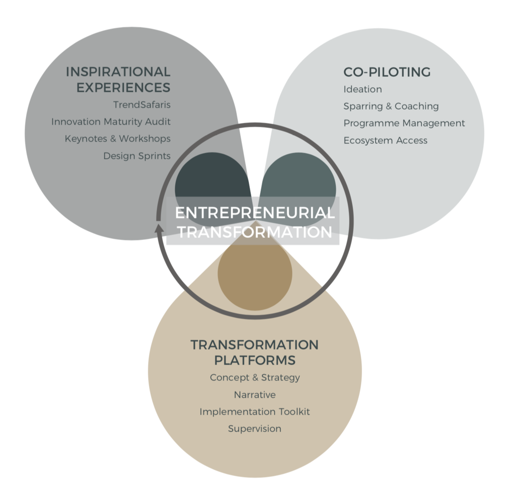 - •INSPIRATIONAL EXPERIENCES to spark change, identify insights and unite key stakeholders•CO-PILOTING across the transformation journey from the SK+ team and our partner ecosystem•TRANSFORMATION PLATFORMS – tangible assets through which to accelerate and sustain company growth