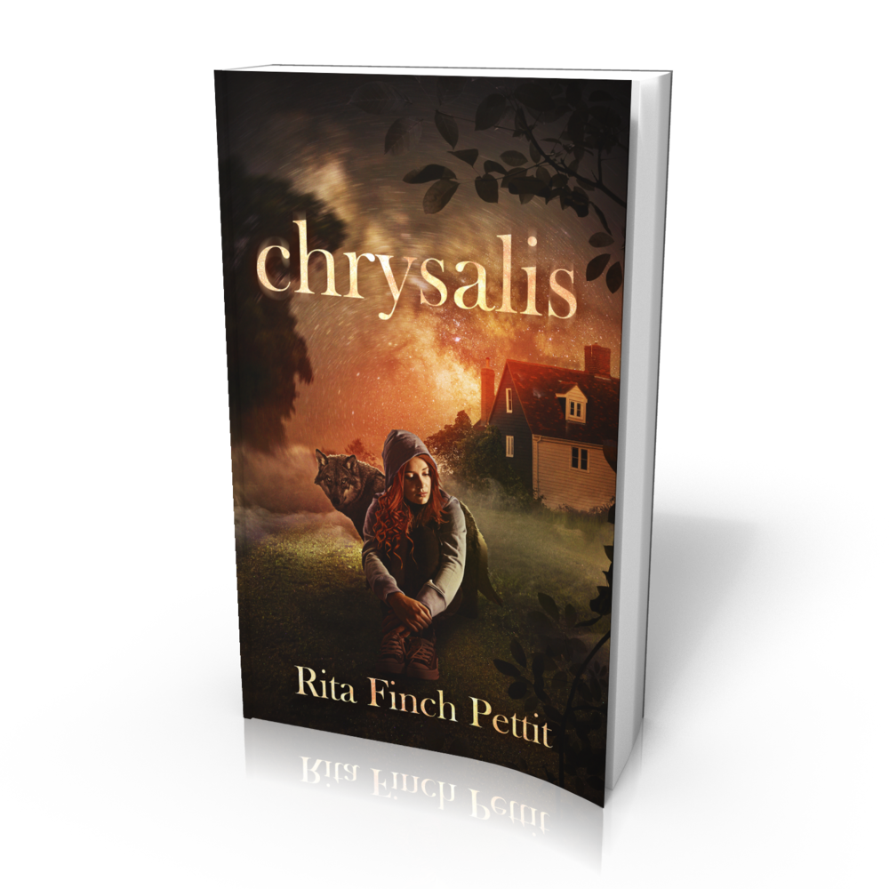 For more information about my novel, visit the  Chrysalis  page of this site.