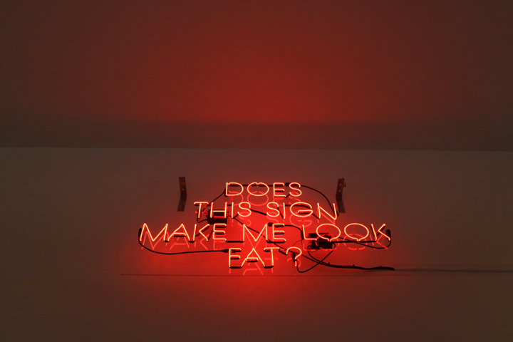 Alejandro Diaz  Does This Sign Make Me Look Fat , 2009 neon mounted on plexiglas 29 x 54 in (73.7 x 137.2 cm)