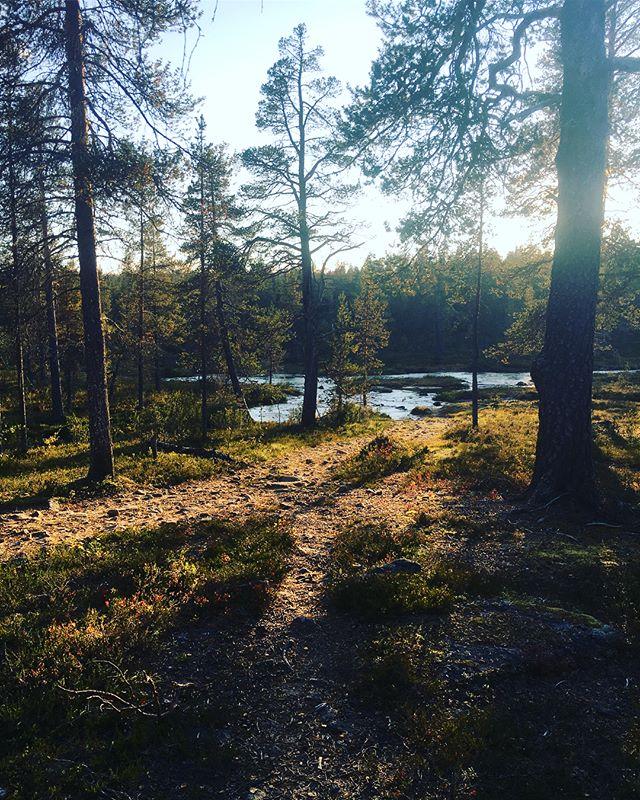 Takana n 75km #urhokekkosenkansallispuisto ssa. Sanoinkuvaamattoman hieno paikka. Ja myös kuvinsanomattoman, koska ei sitä luonnon upeutta näihin kuviin saa. Ainakaan mun kuvaustaidoilla. Rakastuin tähän paikkaan ja tulen uudelleen.  #ukk #ukkpuisto #vaellus #retkeily #ulkonaperillä