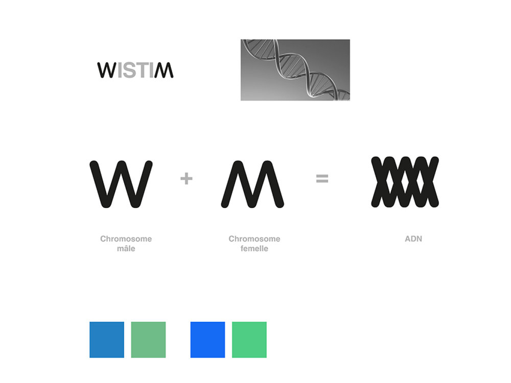 WISTIM 3.jpg