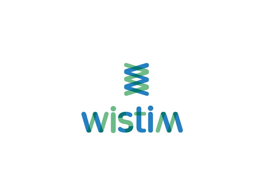 WISTIM 2.jpg