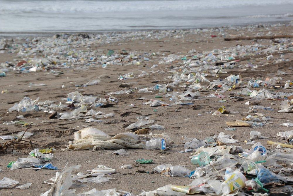 garbage-2369821.jpg