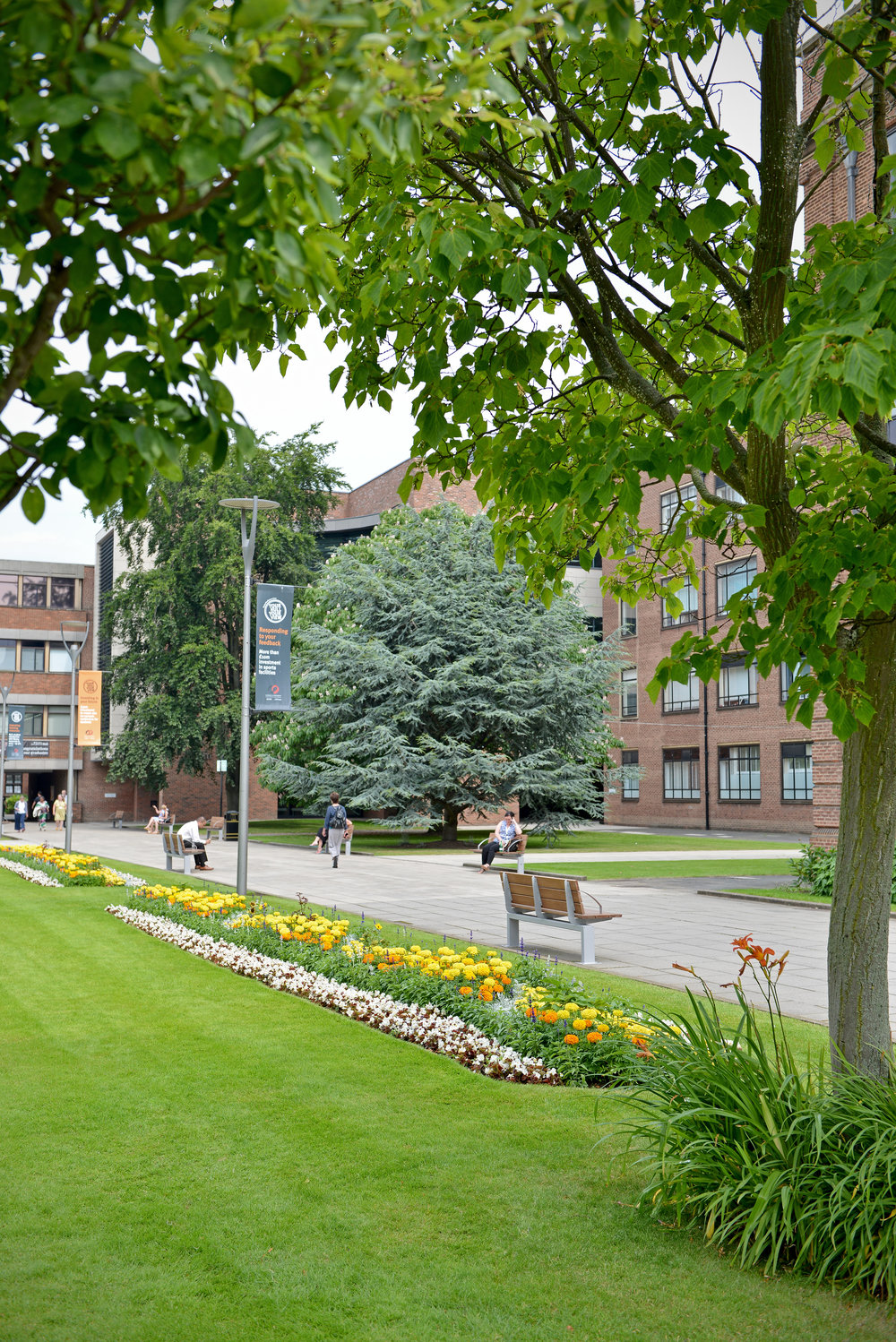 Campus Walkway with Trees and Flowerbeds Portrait UNI_6230.jpg