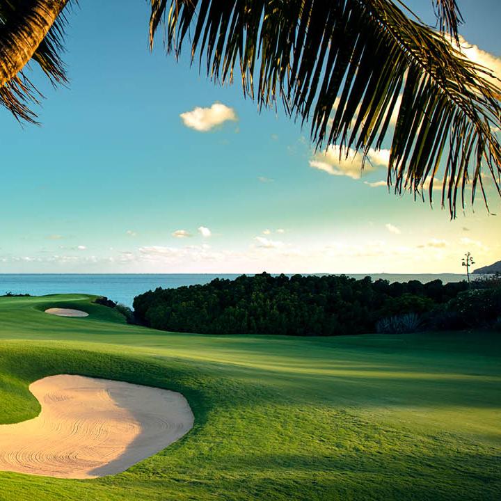 GolfTravelSolutions Golf Clubs-.jpg