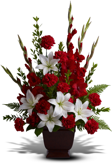 Tender Tribute    Heavenly white lilies, rich red carnations and gladioli create a touching funeral arrangement or sympathy bouquet for the service. This red and white sympathy arrangement includes white asiatic lilies, red gladioli, red carnations, myrtle, sword fern and salal.    Buy Now>>