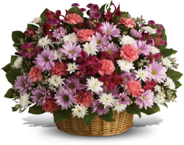 Rainbow Reflections Basket    Send comfort to the family with these abundant flowers. Lavender daisy and button spray chrysanthemums mix with white cushion spray chrysanthemums, pink carnations and alstroemeria.    Buy Now>>