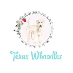 Texas Whoodles Breeder