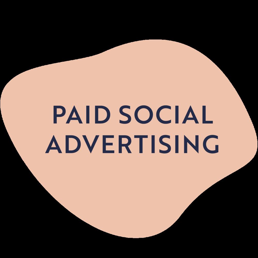 Paid Social Media Advertising