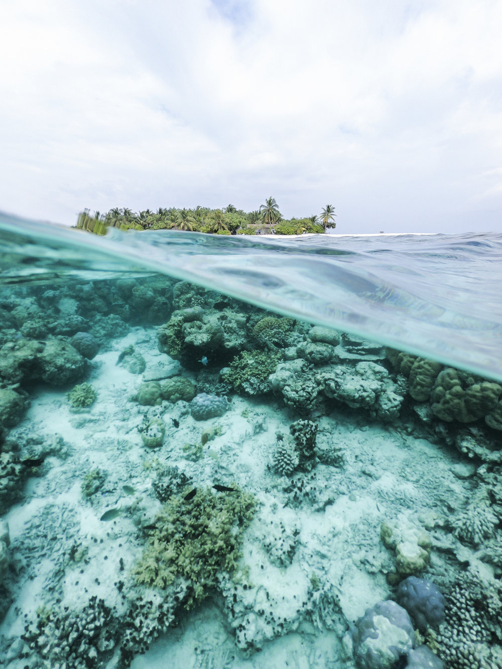 Coral reefs provide the foundation for the livelihoods of people living on island nations. Photo credit: Ishan