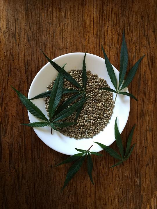 hemp-seeds-1418322_960_720.jpg