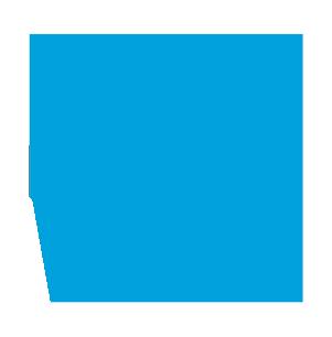 givStr_Logo_BugONLY_RGB_web_lg.png