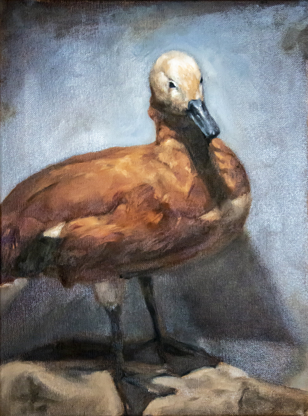 """Duck still life, Oil on stretched canvas, 13x19"""", 2018"""