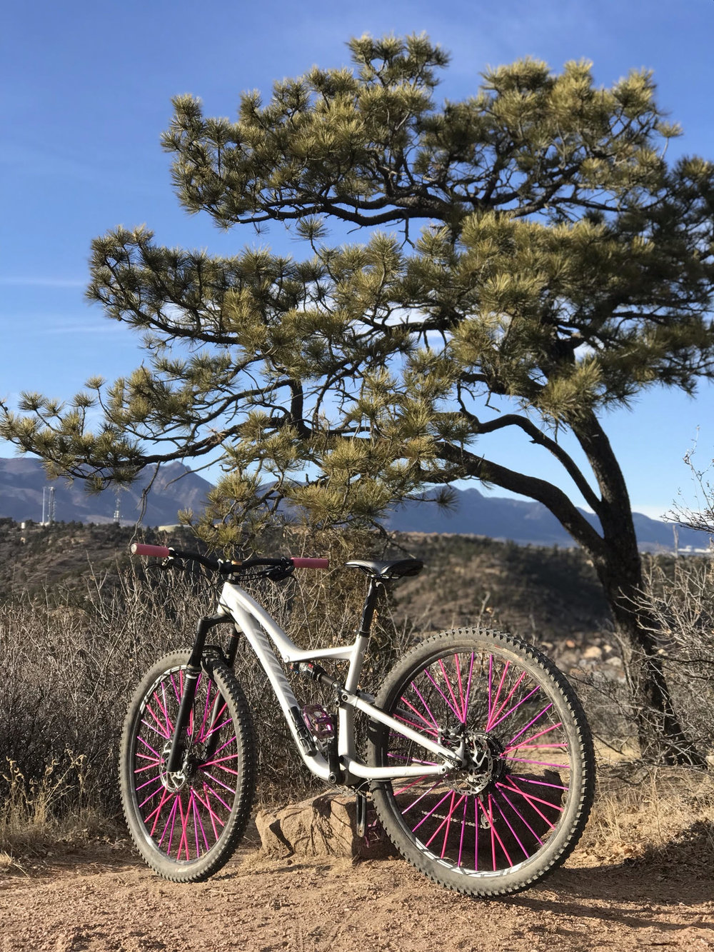 Specialized Rumor - This is my first full suspension bike. The suspension allows me to go over obstacles with ease and allows me to jump more easily since I can preload the suspension. It's definitely a ShredWorthy bike!