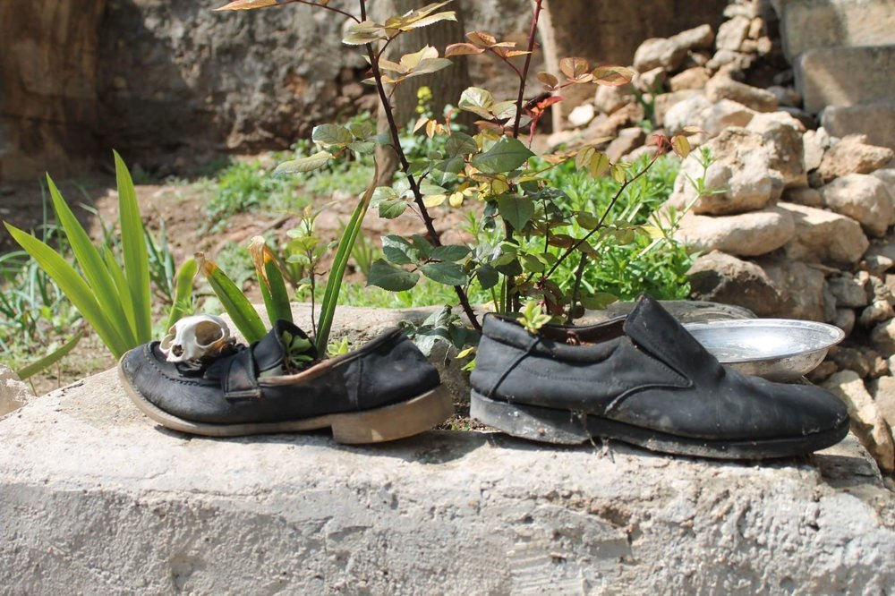 """Mr. Al Taha is growing flowers in the old shoes. He said that """"if flowers even grow in these old shoes, it means there is still hope for me"""""""