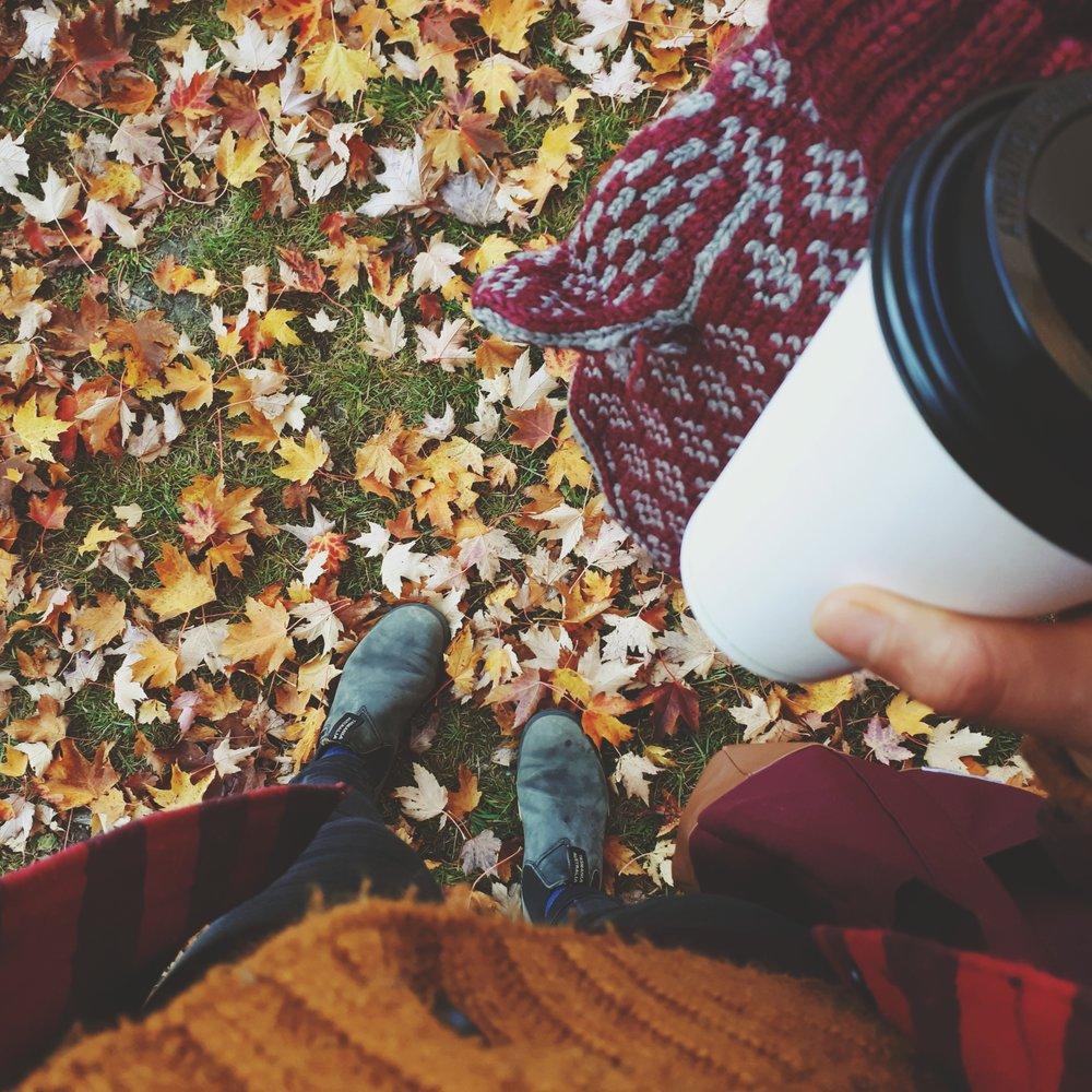 basic fall pic.jpg