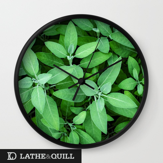 Green hues in depth to create lovely background of safe