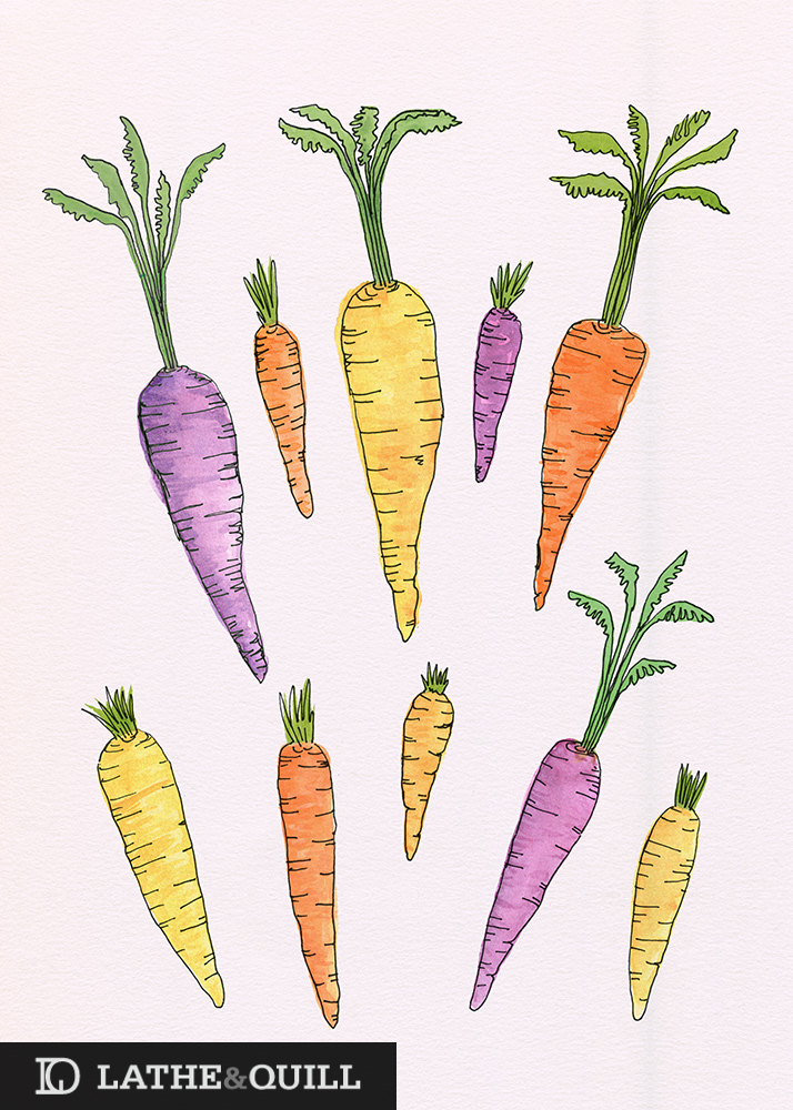 Watercolor Heirloom Carrots