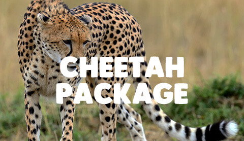 7 Day Tanzania Adventure - All Inclusive Packages starting as low as $3751 per person