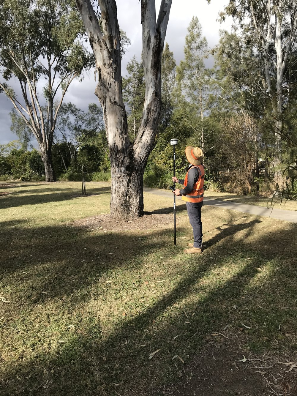 Roger Rankine capturing the coordinates of a tree using a Trimble R2 GNSS receiver for plotting into an Independent Arboricultural Services Tree Mapping Report.