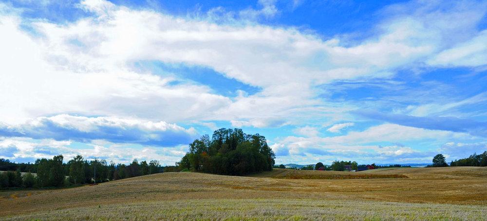 landskap1.jpg