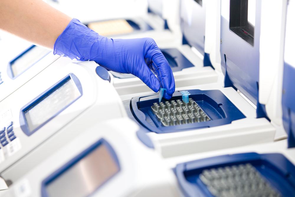 PCR analysis of Pseudomonas
