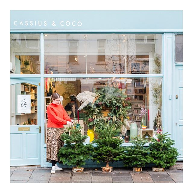 It's beginning to look a lot like Christmas! 🌲 ⠀ We have mini Christmas trees and larger trees available in-store (up to around 4ft in height), just waiting for gifts to be put underneath!⠀ .⠀⠀⠀⠀ .⠀⠀⠀⠀ .⠀⠀⠀⠀ .⠀⠀⠀⠀ #postitfortheaesthetic #beautifulmatters #makemoments #cerealmag #kinfolkstyle #seeksimplicity #thehappynow #allshots_ #nothingisordinary #finditliveit #verilymoment #minimaliststyle #kinfolklife #christmas #minimaliststyle #scandistyle #the_gentle_manifesto #petitejoys #alittlebeautyeveryday #simplethingsmadebeautiful #theslowdowncollective #inspiremyinstagram #calmversation #darlingdaily #liveauthentic #shopindependent #finditstyleit #embracingtheseasonsathome #livemoremagic #shopindie