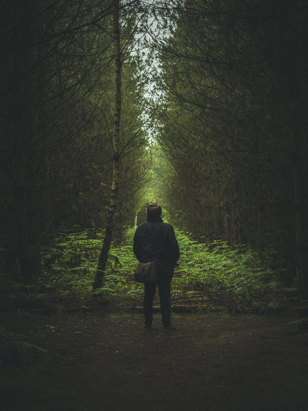 Sherwood Pines 02.jpg