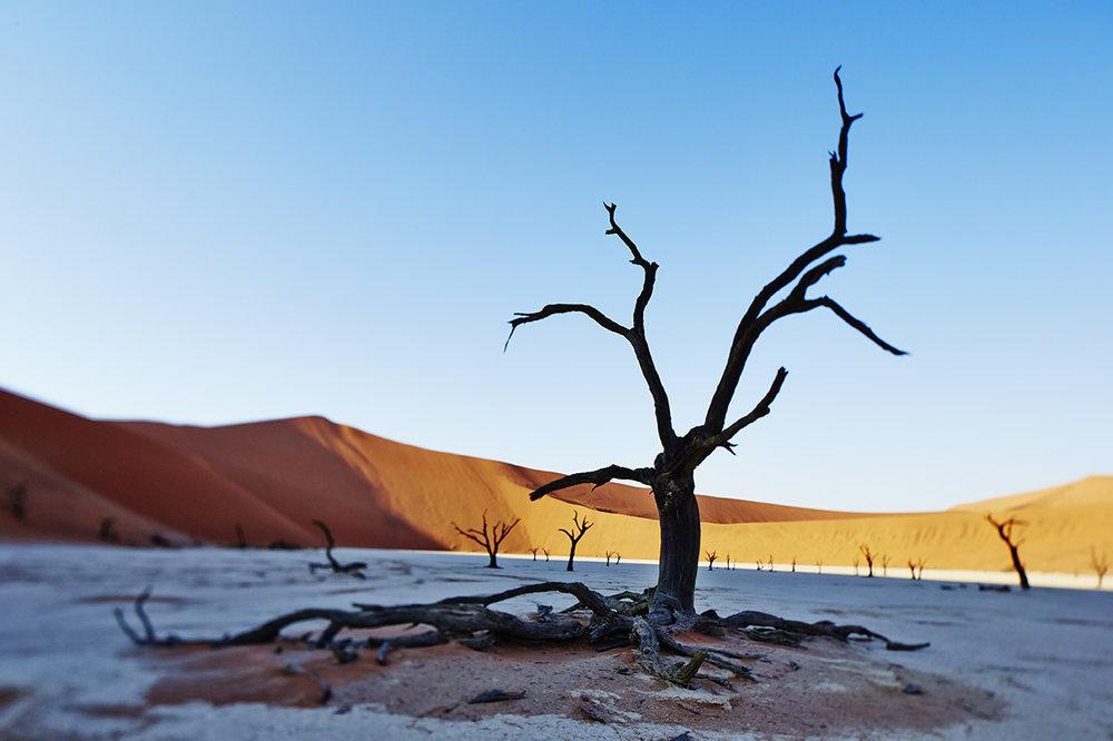 Namibia 2.jpg